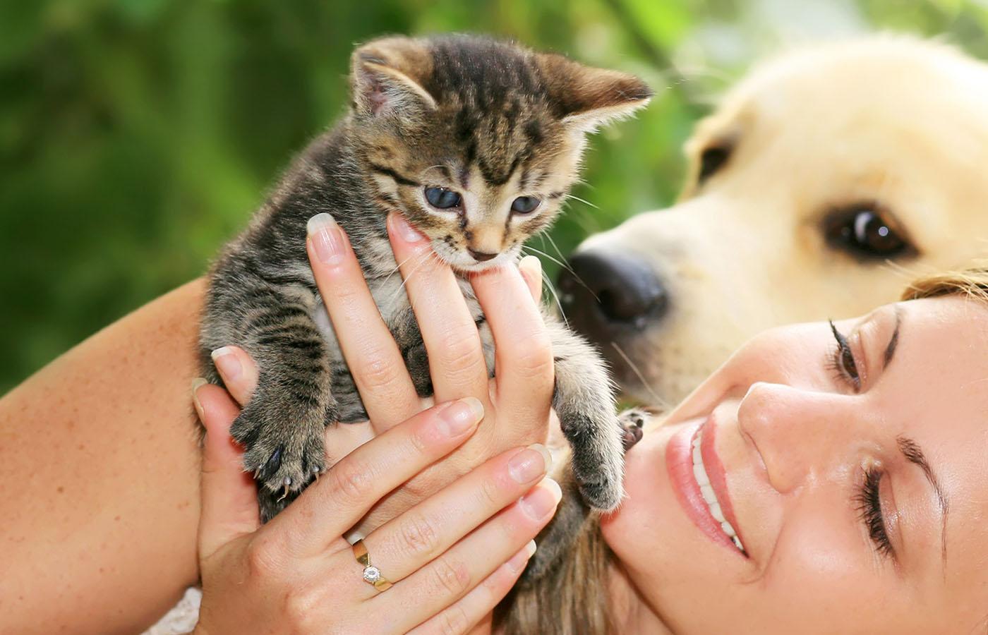 produits-veterinaire-pharmacie-de-camphin-camphin